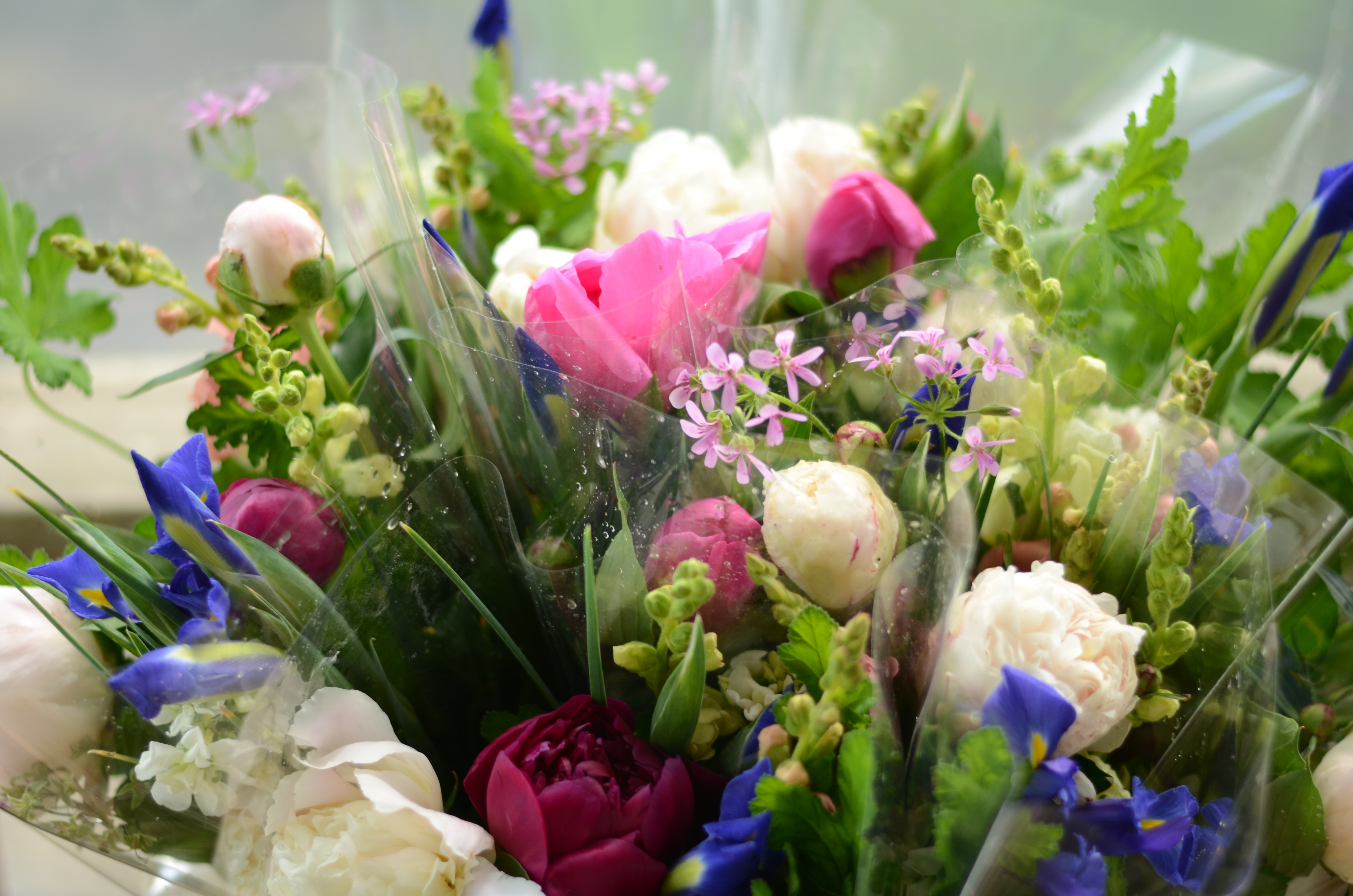Flower Csa The Bloomery